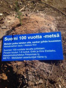 Pinsiöön nousi Suomi 100 vuoden juhlametsikkö